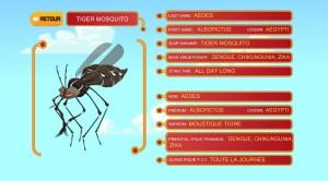 visuel slap mosquitoes2