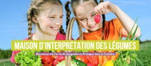 event_legumes-project-saveurs-savoirs-la-culture-de-nos-legumes_303467