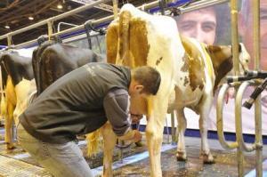 services-et-metiers-de-l-agriculture_article_l