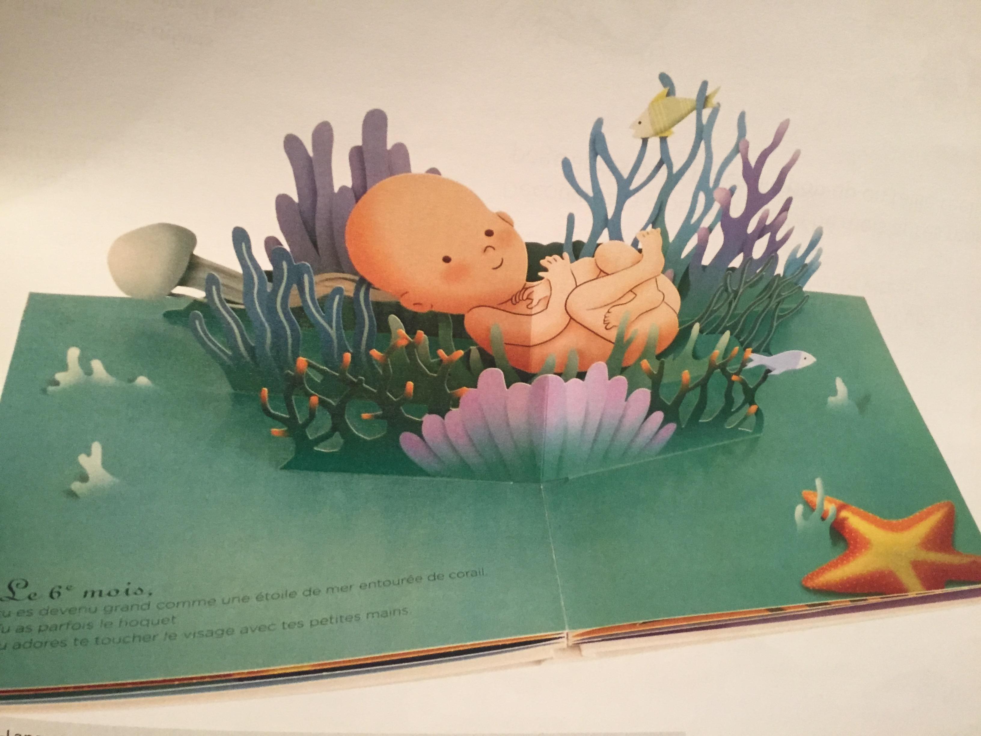 Un Merveilleux Livre Pop Up Sur Les Bebes Avant La Naissance